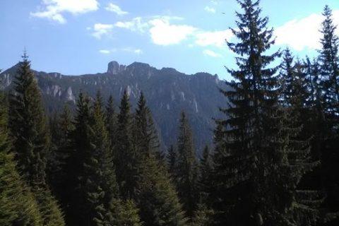 Adrenalina din munte