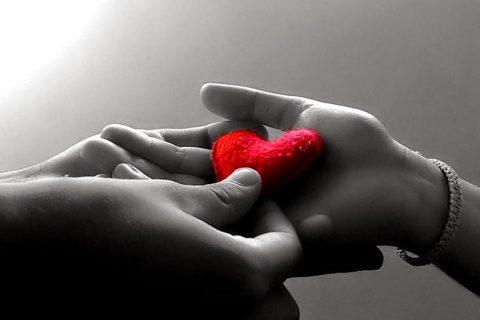 Mă iertați – cât costă dragostea?